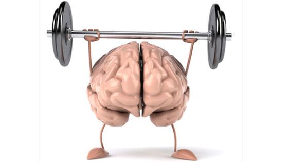 Les glucides : le premier carburant de votre cerveau